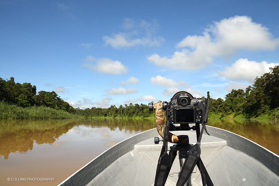 Nikon D500: C.S.Ling On Assignment in Borneo | C.S.Ling ...